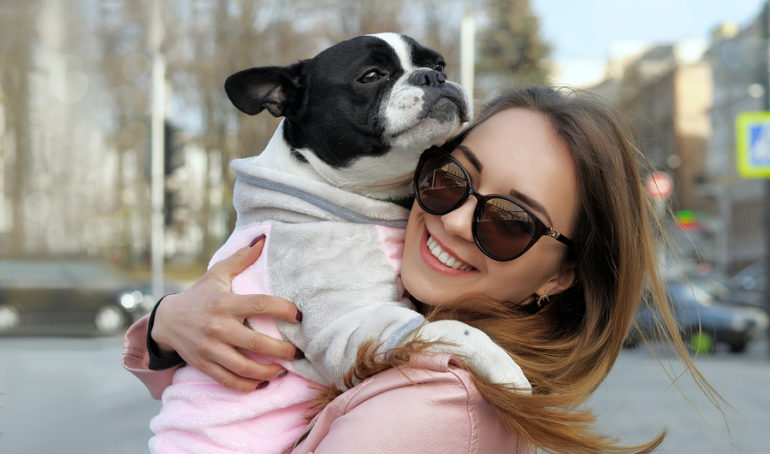 What is the Average Lifespan of a French Bulldog?