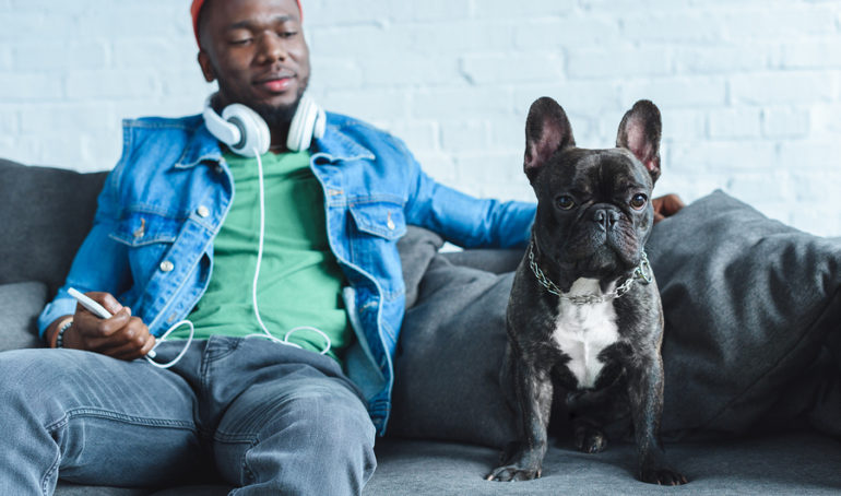 Should I Get a French Bulldog? A Pros and Cons List