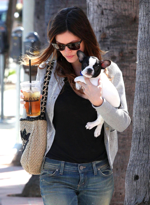 Celebrities with French Bulldogs Rachel Bilson