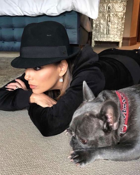 Celebrities with French Bulldogs Eva Longoria