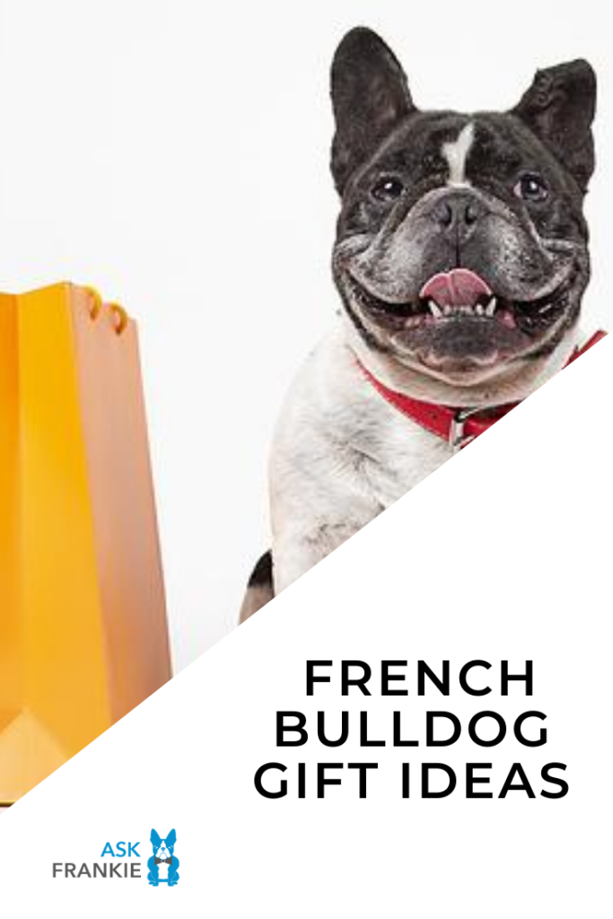 11 Must-Have French Bulldog Gifts For a Frenchie Lover
